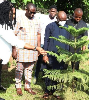 Delta-partners-FADE-Africa-on-green-environment-847x477